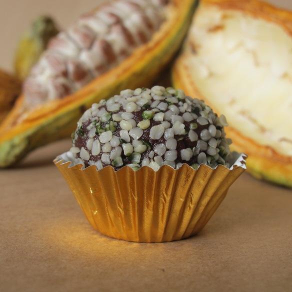 trufas de chocolate con semillas de hemp- lovely gourmet